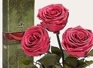 Неувядающие долгосвежие розы