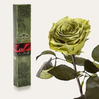 Долгосвежая роза Лаймовый нефрит 7 карат (1127-GR01)