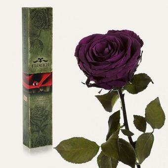Долгосвежая роза Фиолетовый аметист 5 карат (1115-BL02)