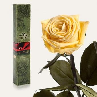 Долгосвежая роза Желтый топаз 7 карат (1127-JL01)