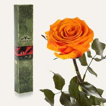 Долгосвежая роза Оранжевый цитрин 7 карат (1127-OR01)