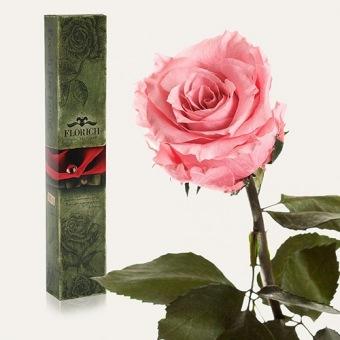 Долгосвежая роза Розовый кварц 7 карат (1117-PK02)
