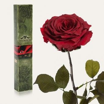 Долгосвежая роза Багровый гранат 7 карат (1127-RD03)