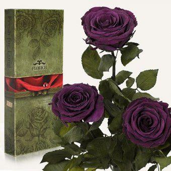 Три долгосвежих розы Фиолетовый аметист 7 карат (1327-BL02)