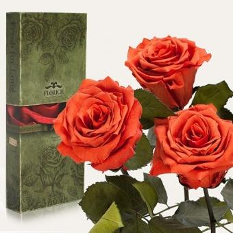 Три долгосвежих розы Кофейный топаз 7 карат (1327-BR01)