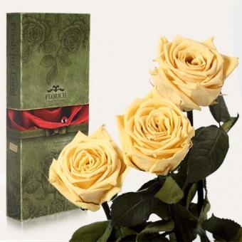 Долгосвежие розы Жёлтый топаз 7 карат, 3 шт. (1317-JL01)