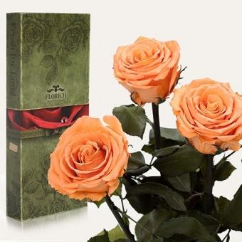 Три долгосвежих розы Золотистый хризоберилл 7 карат (1327-JL03)