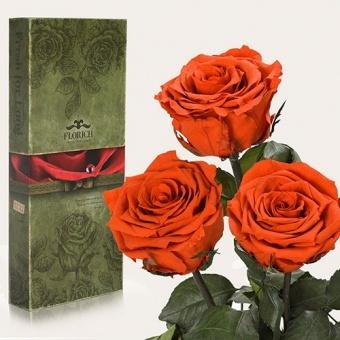 Три долгосвежих розы Огненный янтарь 7 карат (1327-OR02)