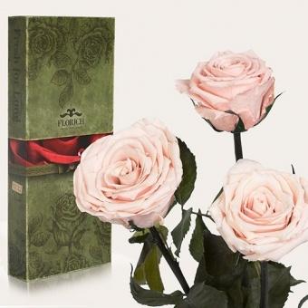 Три долгосвежих розы Розовый жемчуг 7 карат (1327-PK01)