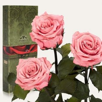 Три долгосвежих розы Розовый кварц 7 карат (1327-PK02)