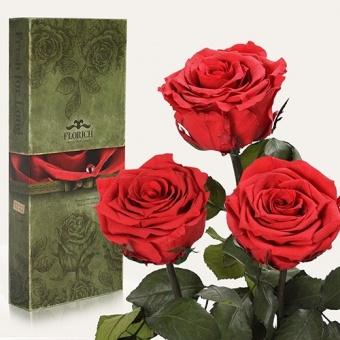 Три долгосвежих розы Алый рубин 7 карат (1327-RD01)