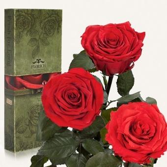 Три долгосвежих розы Красный рубин 7 карат (1327-RD02)