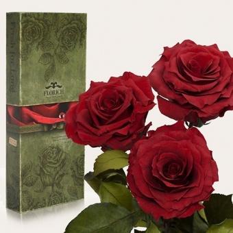 Три долгосвежих розы Багровый гранат 7 карат (1327-RD03)